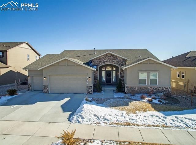 6027 Wolf Village Drive, Colorado Springs, CO 80924 (#7275168) :: CENTURY 21 Curbow Realty