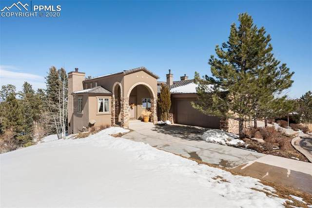 1080 Summer Spring View, Colorado Springs, CO 80906 (#7277897) :: Tommy Daly Home Team