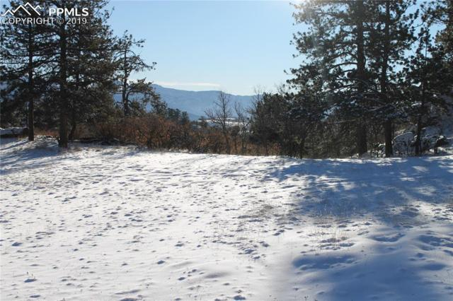 1305 Apache Trail, Florissant, CO 80816 (#7283149) :: Action Team Realty