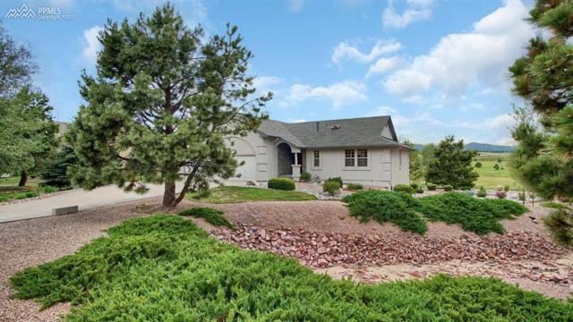 20270 Doewood Drive, Monument, CO 80132 (#7283275) :: 8z Real Estate