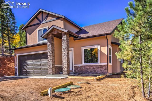 71 Mount Elbert Drive, Divide, CO 80814 (#7286412) :: Fisk Team, RE/MAX Properties, Inc.