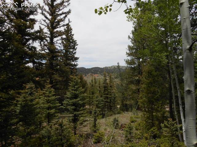376 Sunset Lane, Cripple Creek, CO 80813 (#7287061) :: The Treasure Davis Team