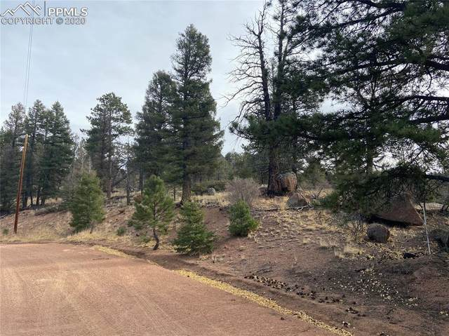3499 N Mountain Estates Road, Florissant, CO 80816 (#7288687) :: The Kibler Group