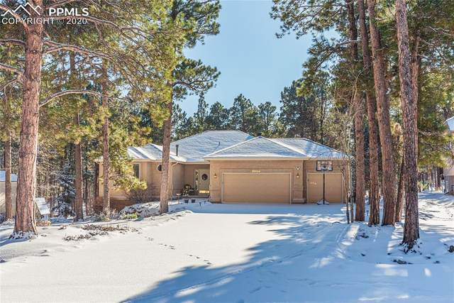 16039 Wildhaven Lane, Colorado Springs, CO 80921 (#7289789) :: Action Team Realty