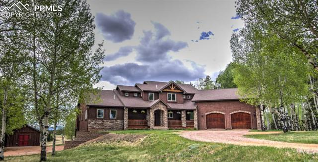 1471 County 51 Road, Divide, CO 80814 (#7292675) :: The Kibler Group