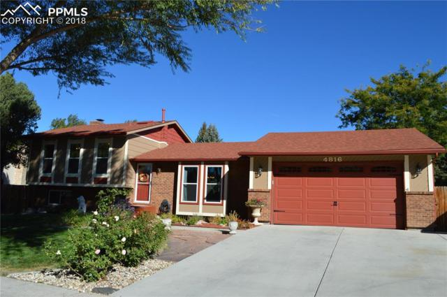 4816 Iron Horse Trail, Colorado Springs, CO 80917 (#7297881) :: CC Signature Group