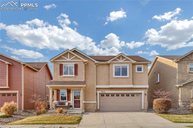7614 Stetson Highlands Drive, Colorado Springs, CO 80923 (#7298567) :: Venterra Real Estate LLC