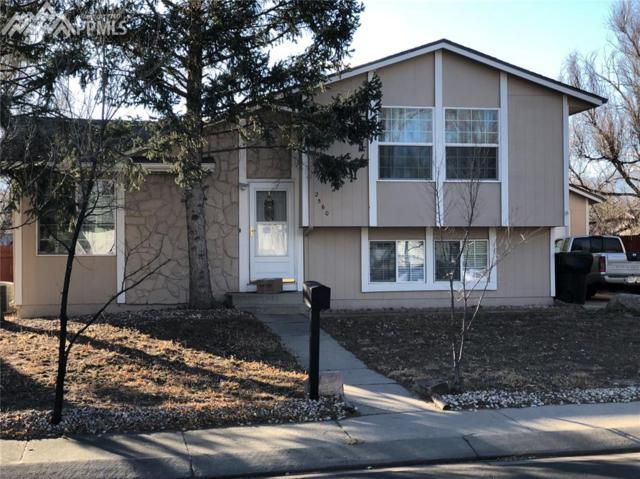 2560 Gina Drive, Colorado Springs, CO 80916 (#7299205) :: Jason Daniels & Associates at RE/MAX Millennium