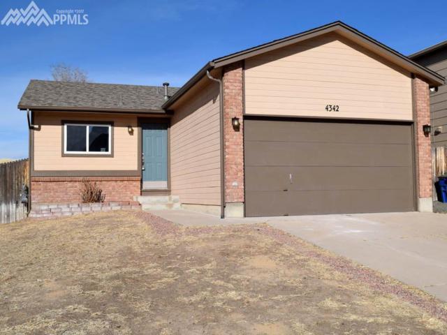 4342 Witches Hollow Lane, Colorado Springs, CO 80911 (#7300071) :: 8z Real Estate