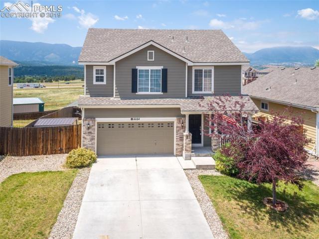 14164 Blue Canyon Grove, Colorado Springs, CO 80921 (#7302280) :: The Kibler Group