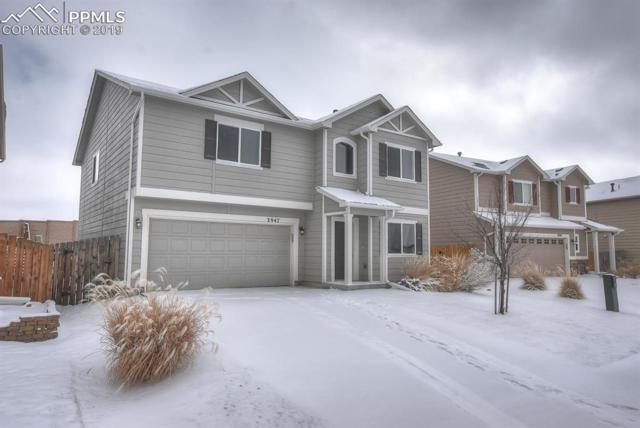 3947 Reindeer Circle, Colorado Springs, CO 80922 (#7304010) :: The Peak Properties Group