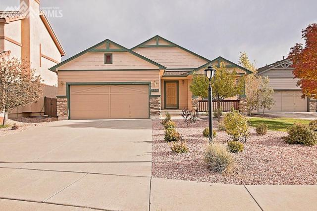 4127 Purple Plum Way, Colorado Springs, CO 80920 (#7308265) :: The Treasure Davis Team