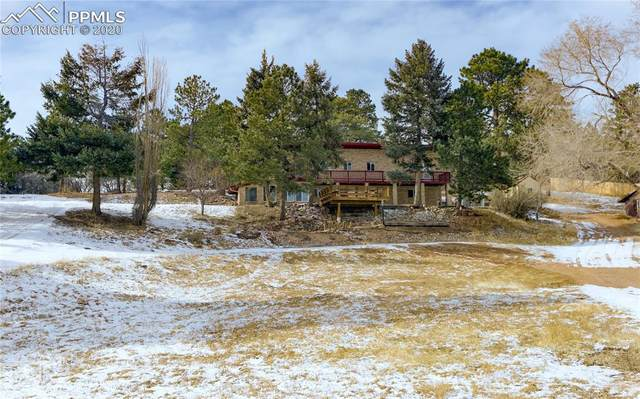 18650 Cloven Hoof Road, Palmer Lake, CO 80133 (#7309871) :: Tommy Daly Home Team