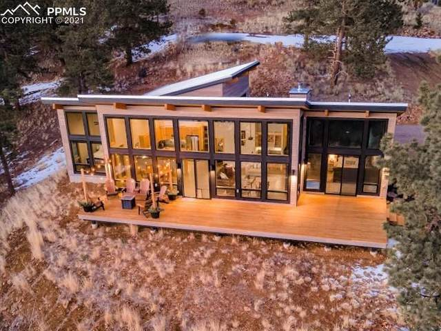 509 Chyleen Terrace, Westcliffe, CO 81252 (#7310093) :: The Gold Medal Team with RE/MAX Properties, Inc