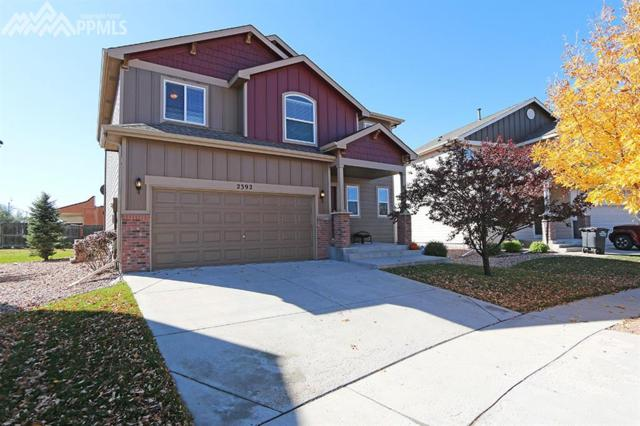 2392 Sierra Springs Drive, Colorado Springs, CO 80916 (#7311208) :: 8z Real Estate