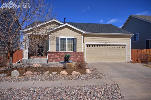 4810 Hawk Meadow Drive, Colorado Springs, CO 80916 (#7313083) :: Jason Daniels & Associates at RE/MAX Millennium