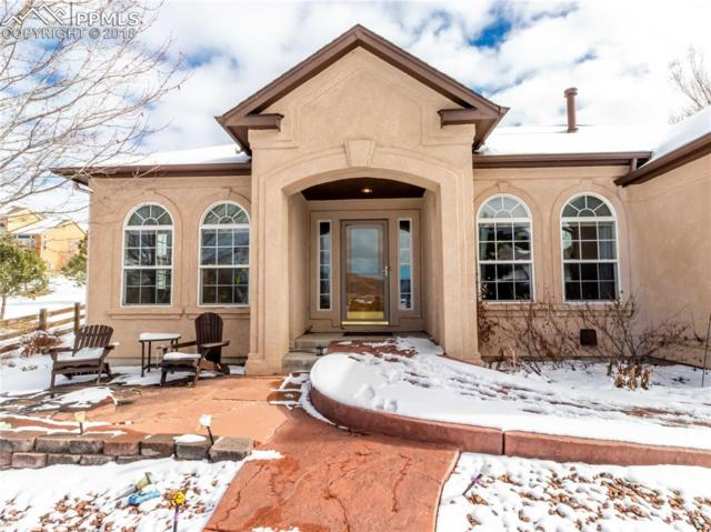 15671 Agate Creek Drive, Monument, CO 80132 (#7321962) :: The Peak Properties Group