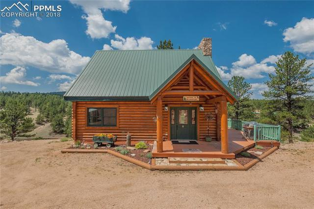 300 Dollar Circle, Florissant, CO 80816 (#7322676) :: Jason Daniels & Associates at RE/MAX Millennium