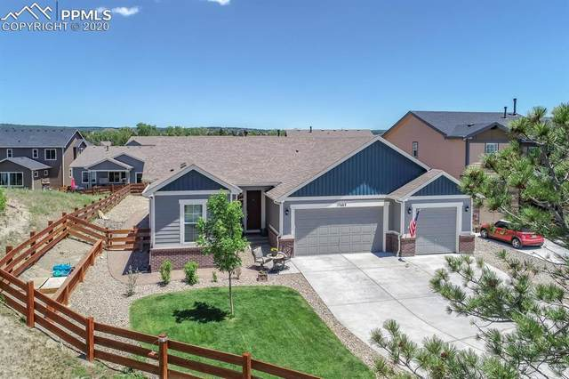 17683 Lake Overlook Court, Monument, CO 80132 (#7324058) :: Tommy Daly Home Team