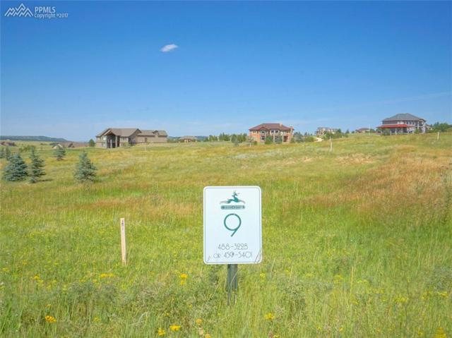 19771 Knights Crossing, Monument, CO 80132 (#7326831) :: 8z Real Estate