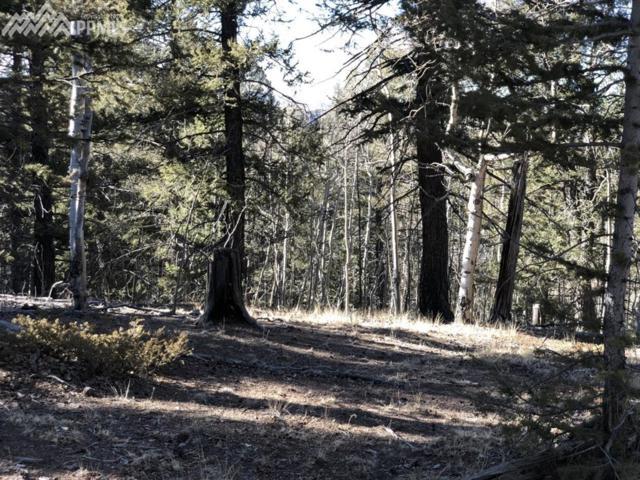 1020 Princess Road, Cripple Creek, CO 80813 (#7327307) :: CENTURY 21 Curbow Realty