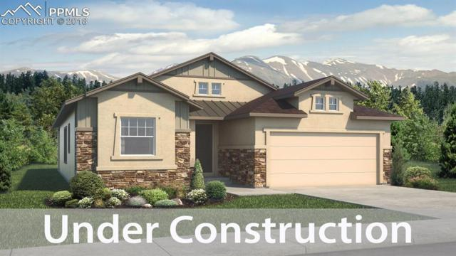 9637 Surrey Run Drive, Colorado Springs, CO 80924 (#7333716) :: 8z Real Estate