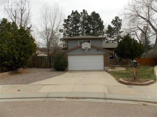 4679 Ranch Drive, Colorado Springs, CO 80918 (#7336187) :: Action Team Realty