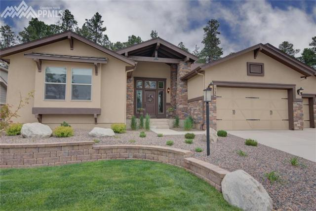 1726 Catnap Lane, Monument, CO 80132 (#7339471) :: Jason Daniels & Associates at RE/MAX Millennium