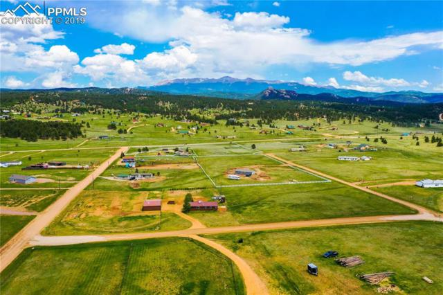 200 Calle De La Nieva, Florissant, CO 80816 (#7340313) :: The Dixon Group