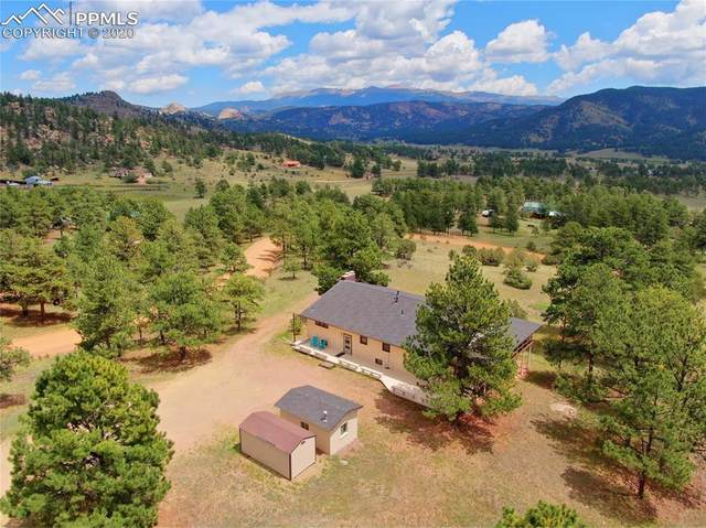 1054 High Chateau Road, Florissant, CO 80816 (#7343064) :: The Treasure Davis Team