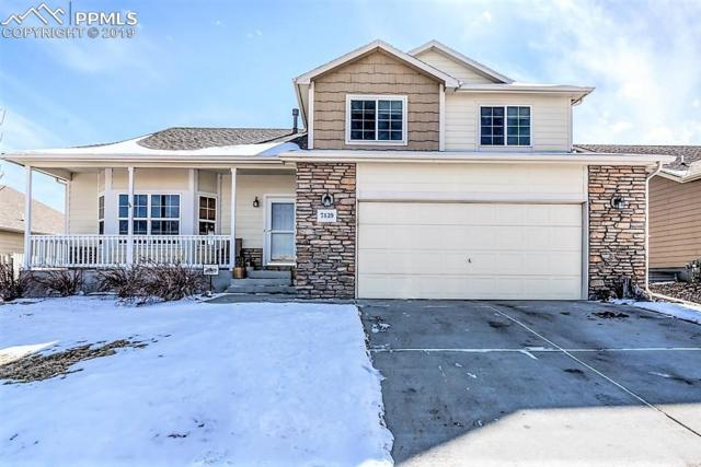 7439 Willow Pines Place, Fountain, CO 80817 (#7344142) :: The Hunstiger Team