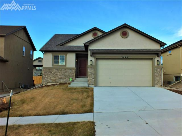 3446 Daydreamer Drive, Colorado Springs, CO 80908 (#7344174) :: The Daniels Team