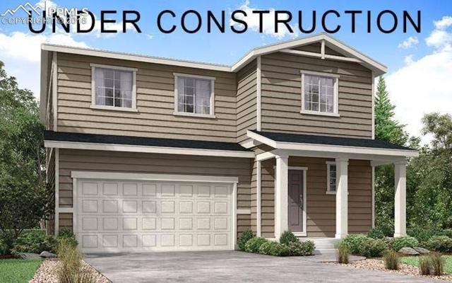 3468 Goldfield Way, Castle Rock, CO 80109 (#7346741) :: Harling Real Estate