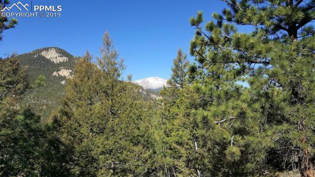 339 Eagle Mountain Road, Manitou Springs, CO 80829 (#7349577) :: Harling Real Estate