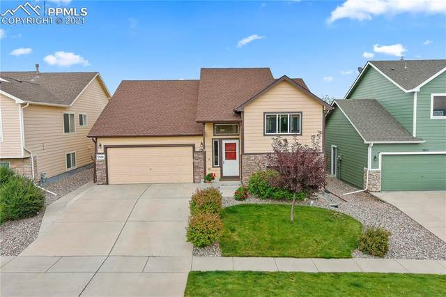 7919 Superior Hill Place, Colorado Springs, CO 80908 (#7353827) :: Tommy Daly Home Team