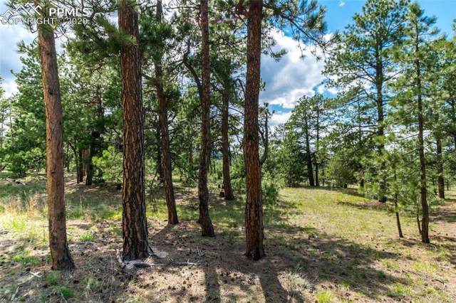 19165 Hilltop Pines Path, Monument, CO 80132 (#7355013) :: Finch & Gable Real Estate Co.