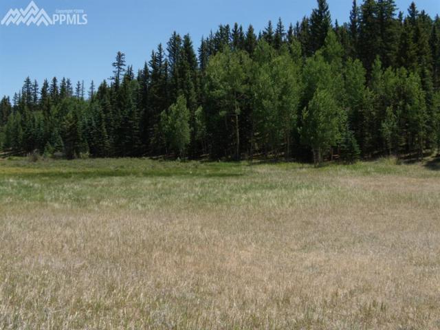 702 Lake Drive, Divide, CO 80814 (#7355245) :: The Peak Properties Group