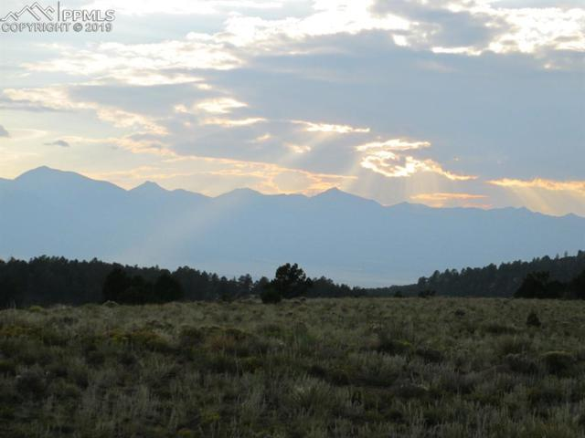 266 Navajo Path, Westcliffe, CO 81252 (#7357847) :: The Treasure Davis Team