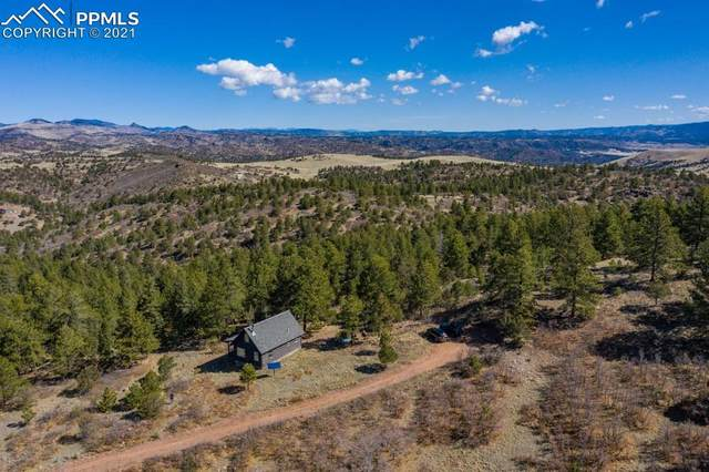 194 Seven Fawns Drive, Canon City, CO 81212 (#7359577) :: The Gold Medal Team with RE/MAX Properties, Inc