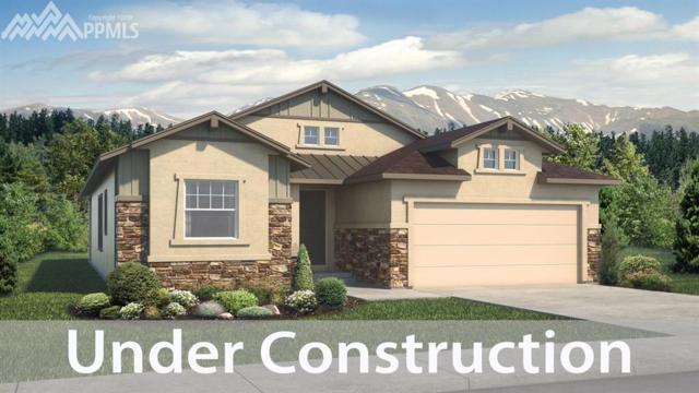 10118 Thrive Lane, Colorado Springs, CO 80924 (#7366390) :: Jason Daniels & Associates at RE/MAX Millennium