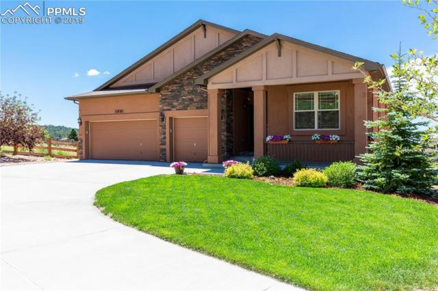15830 Midland Valley Way, Monument, CO 80132 (#7366634) :: The Daniels Team