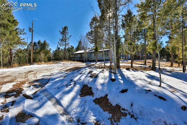 252 Honeysuckle Road, Woodland Park, CO 80863 (#7366643) :: Action Team Realty