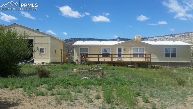 35 W Rockrimmon Road, Williamsburg, CO 81226 (#7366871) :: Venterra Real Estate LLC
