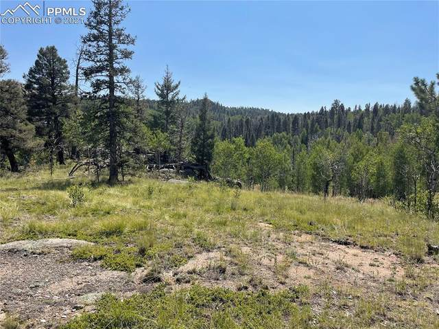 148 Cheyenne Way, Florissant, CO 80816 (#7367814) :: Tommy Daly Home Team