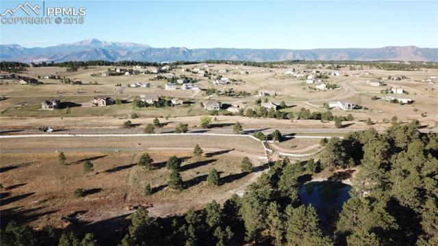3388 Blue Heron Spring Lane, Colorado Springs, CO 80908 (#7368615) :: 8z Real Estate