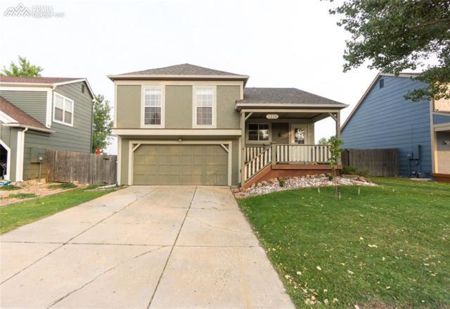 5220 Kensington Avenue, Castle Rock, CO 80104 (#7369360) :: 8z Real Estate