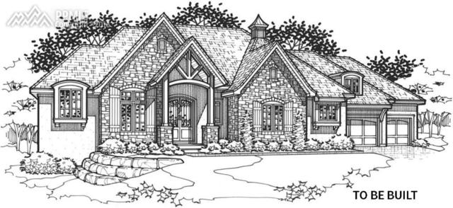 2435 Stratton Pines Point, Colorado Springs, CO 80906 (#7371414) :: 8z Real Estate