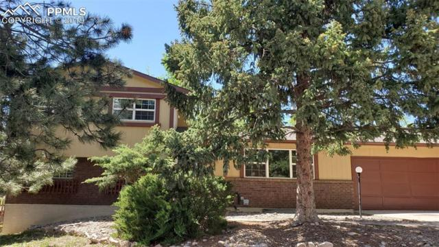 4544 N Sleepy Hollow Circle, Colorado Springs, CO 80917 (#7371477) :: Colorado Home Finder Realty