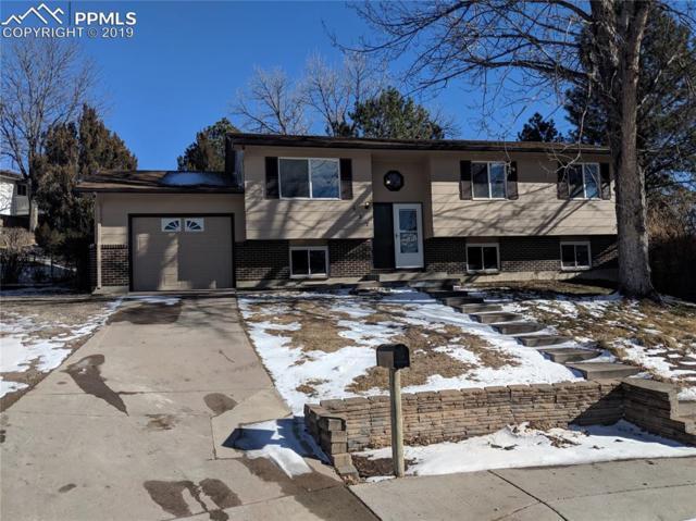 427 Squire Court, Colorado Springs, CO 80911 (#7372490) :: 8z Real Estate