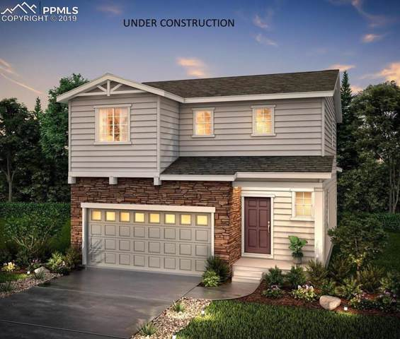 1999 Villageview Lane, Castle Rock, CO 80104 (#7373934) :: Harling Real Estate
